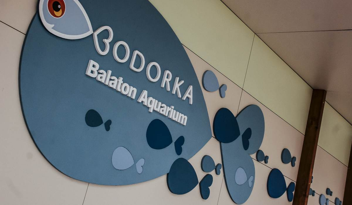 Аквариум Bodorka Balaton