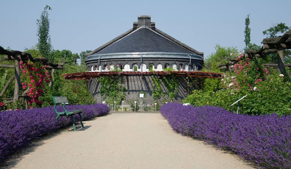 Ботанический Сад Берлина