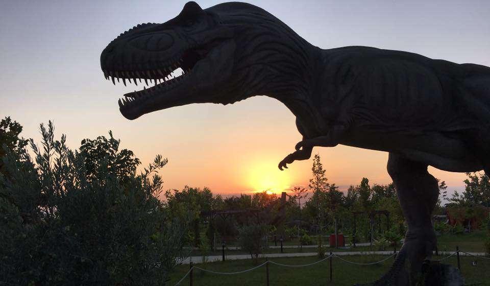 Дискавери-Парк в Сиде