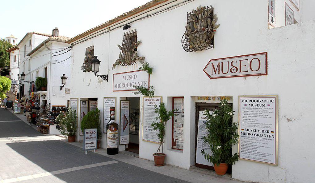 Музей Микрогигантов