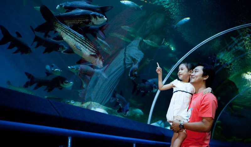 Океанариум Underwater World Pattaya