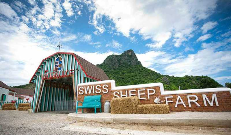 Овечья Ферма Swiss Sheep Farm в Ча-Аме
