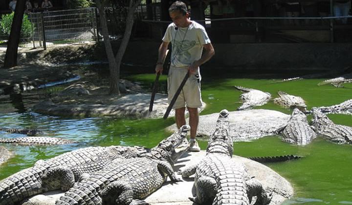 Парк Крокодилов в Торремолиносе