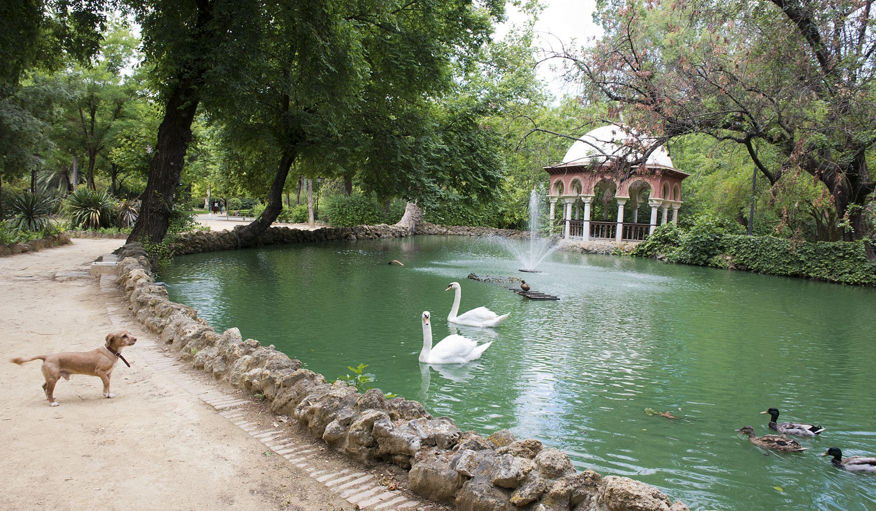 Парк Марии Луизы