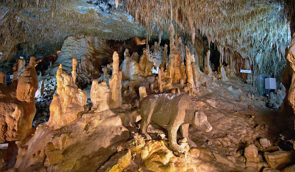 Пещера Петралона (ЗАКРЫТА НА РЕСТАВРАЦИЮ ДО 2021 ГОДА)