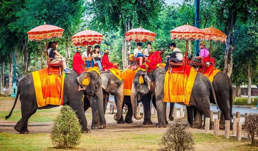 Картинки по запросу пхукет дети со слонами