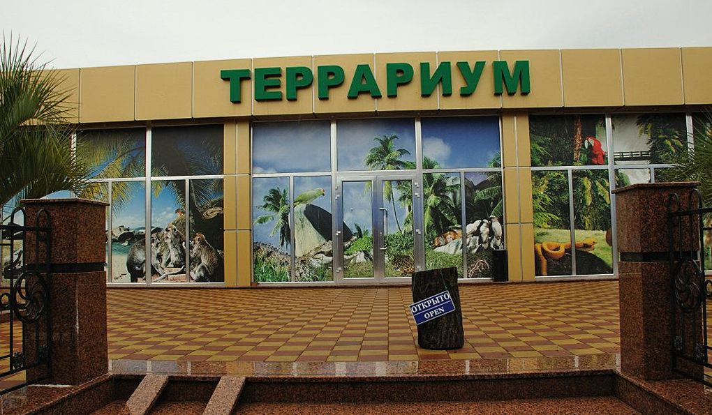 Террариум в Адлере