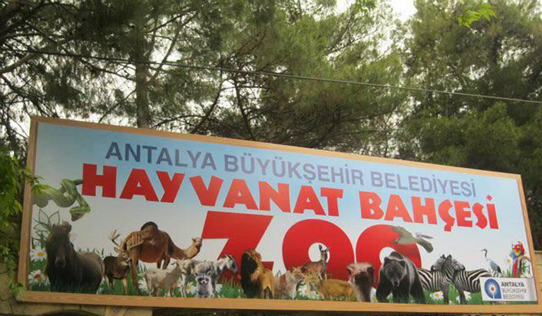 Зоопарк Антальи