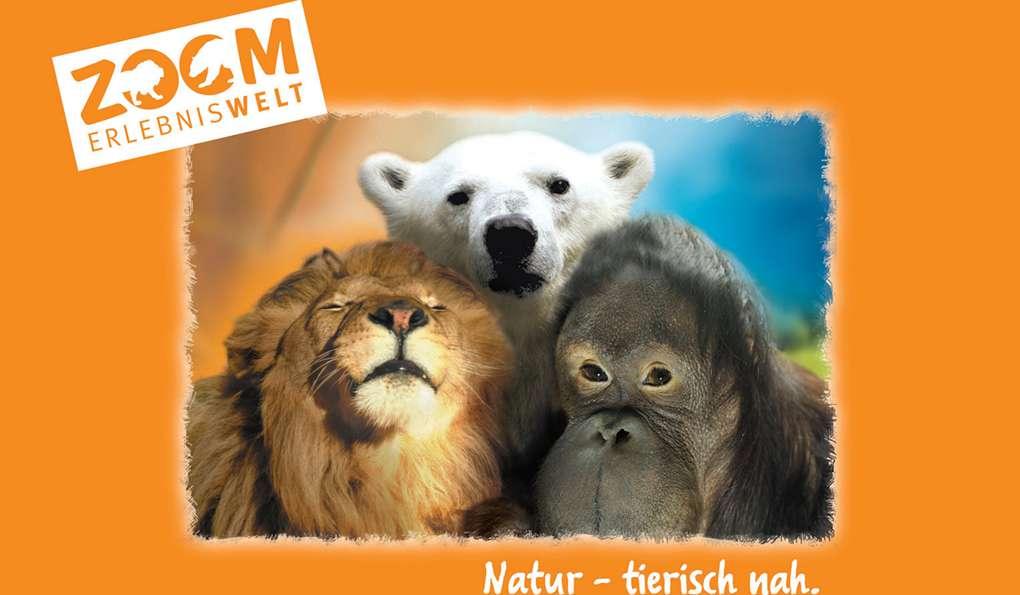 Зоопарк в Гельзенкирхене