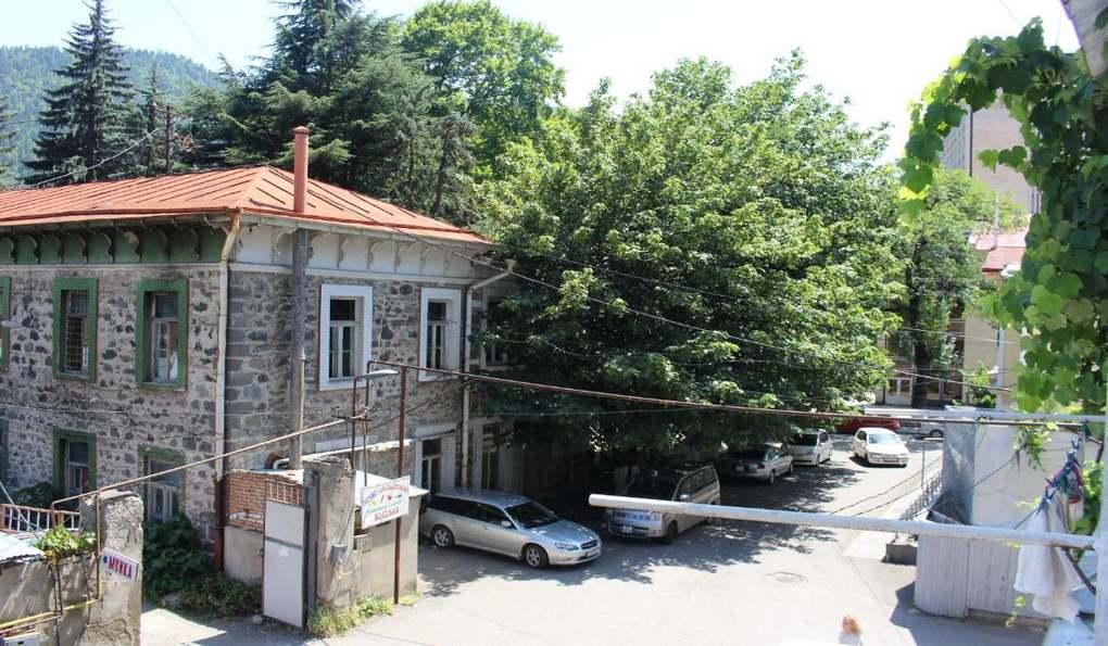 Apartment Comfort Borjomi