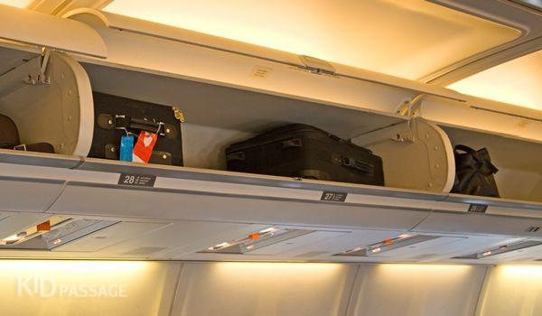 a1957341683d Правила провоза ручной клади и багажа в самолете   Портал Кидпассаж