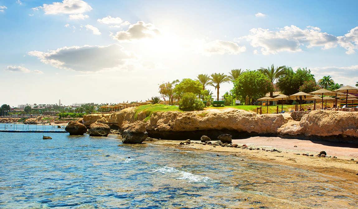 египет в ноябре: осенние каникулы на море фото 4