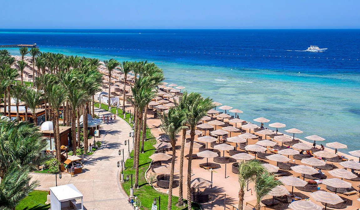 египет в ноябре: осенние каникулы на море фото 5