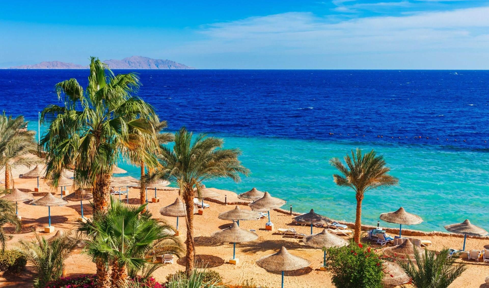 Шарм-эль-Шейх в январе: отдых и погода в Шарм-эль-Шейхе (Египет)